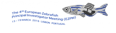 Jeannette Martínez-Val and Pedro Fernández have participated in The 4th European Zebrafish Principal Investigators Meeting (EZPM)